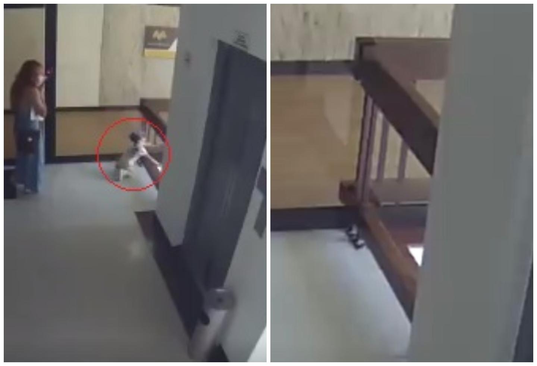 Niña se salvó de milagro de caer al vacío desde un cuarto piso