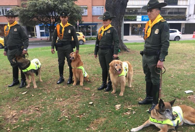 Perros héroes de la Policía que están puestos en adopción.