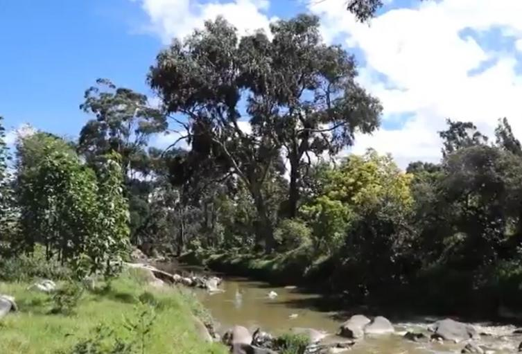 Parque Cantarana