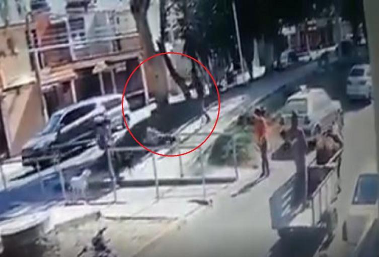 Hombre que golpeó a un perro terminó golpeado en el rostro en Perú