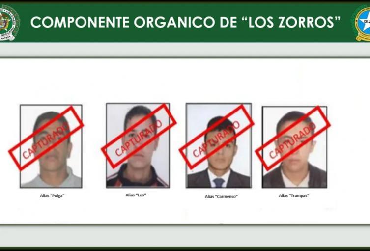 Los Zorros