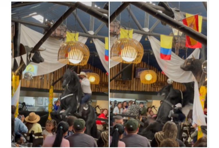 Caballo se cae en restaurante de Bogotá y causa pánico