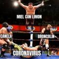Meme Coronavirus
