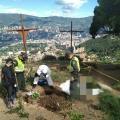 Exhuman los restos de 43 gatos en Medellín