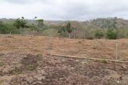 Los cultivos están secos por la falta de agua y los pobladores temen a perderlos todo, pues son su mayor fuente de ingreso.