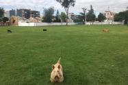 Parque sector de Cedritos en Bogotá