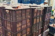 La Fundación Banco Arquidiocesano de Alimentos donó 13 toneladas de pollo crudo que serán distribuidos entre las cárceles El Buen Pastor, La Picota y La Modelo de Bogotá.