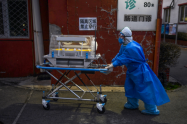 Muerte de bebés por coronavirus / Bebés contagiados