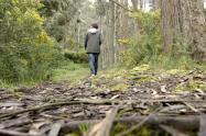 Reapertura de senderos ecológicos