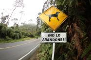 Señales instaladas en las vías donde más casos de abandono animal se han registrado.