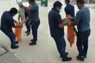 [Video] Denuncian al Sena de asesinar perros en una instalación