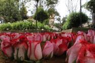 Madrid, Cundinamarca, celebrará su cumpleaños 461 con un festival de flores