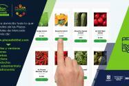 Distrito habilitó portal web para mercar