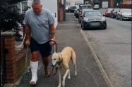 Perro Bill y su dueño