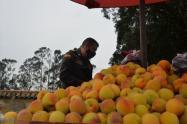Multan a vendedor de duraznos y pelanga en Zipaquirá