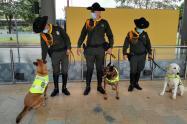 Seguridad canina en los portales de Transmilenio