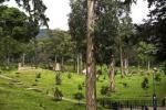 Parque Nacional de Bogotá