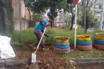 Voluntariado ambiental