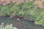 Hallan cadáver en el río Tunjuelito