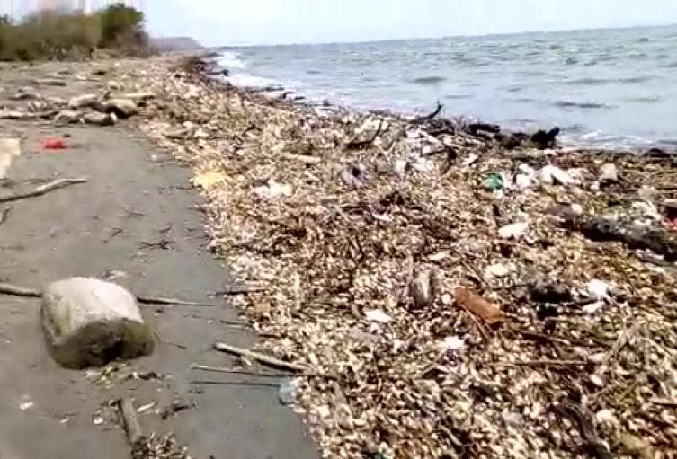 Playas de Puerto Colombia, Atlántico
