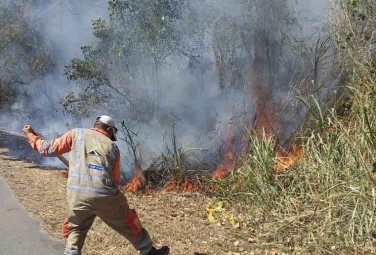 Incendio forestal en el Tolima.