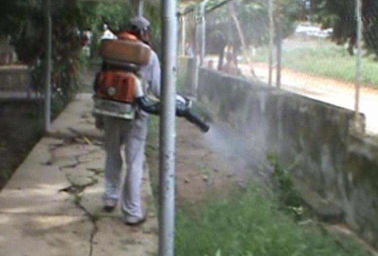 El dengue en el Tolima ha dejado cuatro muertes en los municipios de San Luis, Chaparral, El Espinal e Ibagué