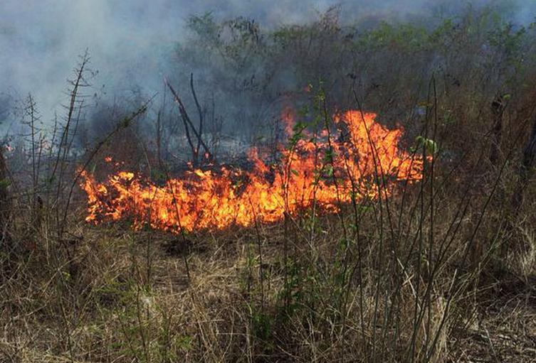 Incendios Forestales Ibagué