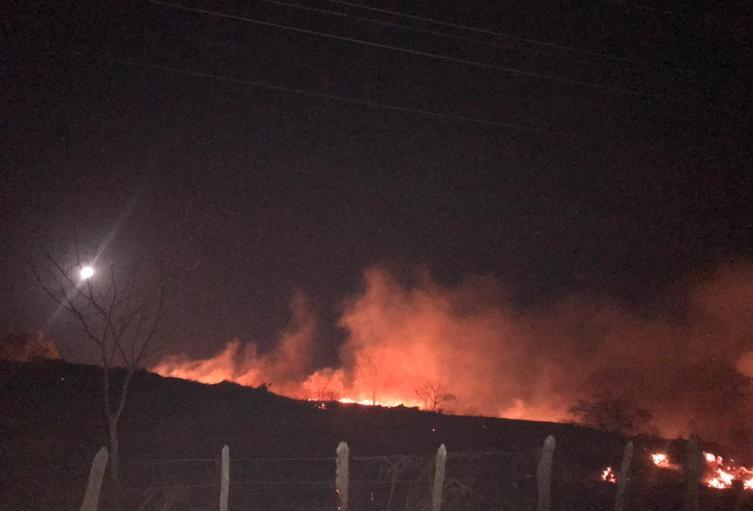 Las llamas afectaron más de 10 hectáreas de terreno.