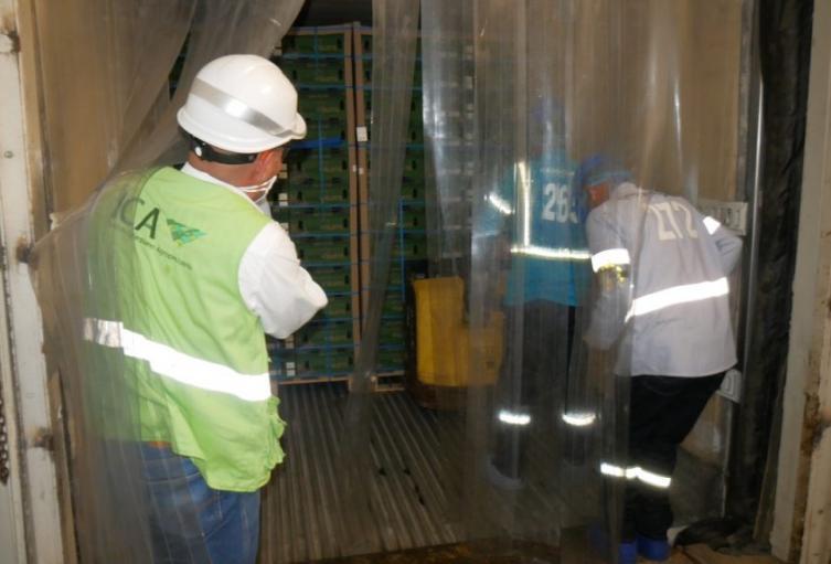 Se espera que este primer contenedor sea el primero de muchos contenedores que esperan llevar hasta puertos internacionales