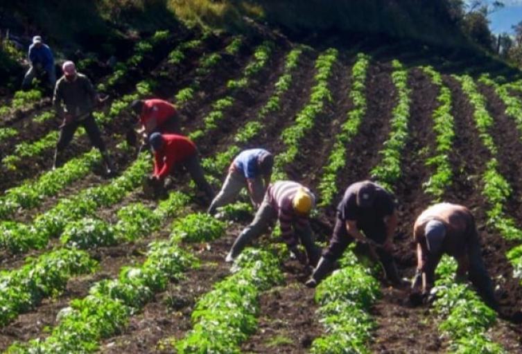 Agricultores de Repelón exigen mejoras en el servicio de energía