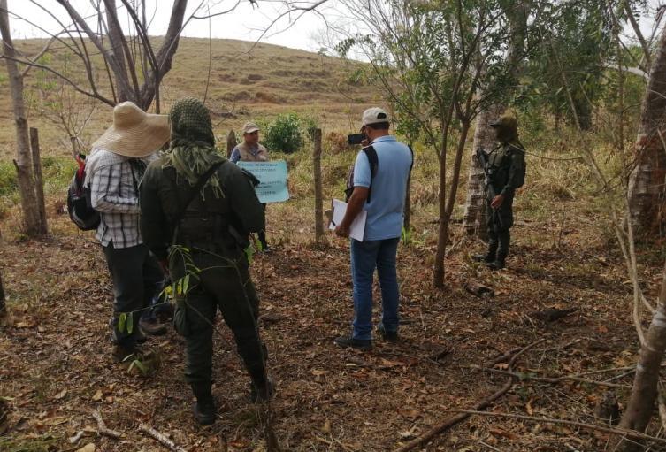 La intervención se cumple en Montelíbano, La Apartada y Montelíbano.
