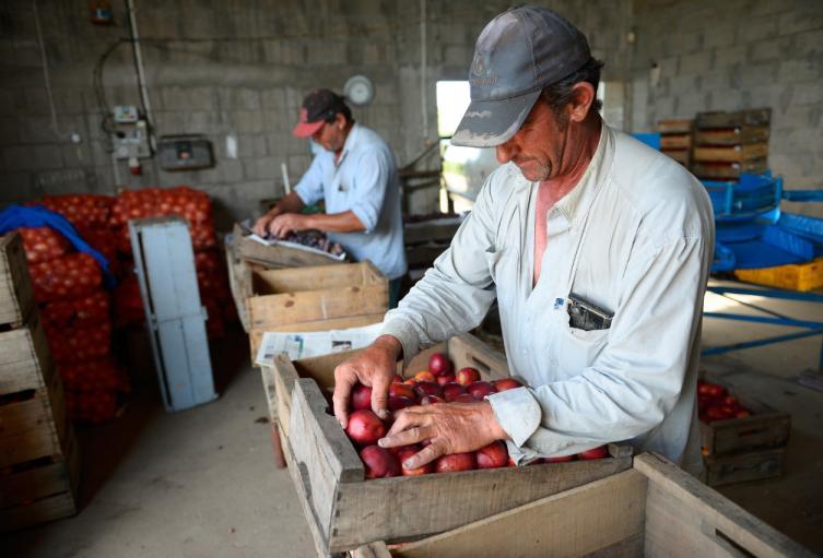 En 2019 se atendieron 331.871 productores, de los cuales el 39% recibieron crédito en condiciones FINAGRO por primera vez.