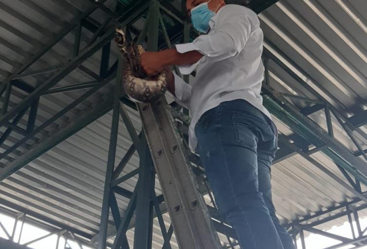 Medio ambiente, Santa Marta, Magdalena, Distrito