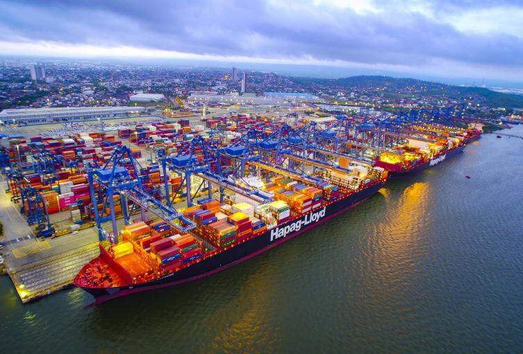Desde Cartagena salió la primera exportación de ñame de los Montes de María hacia la Unión Europea