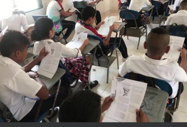 Educación, Santa Marta, Magdalena, Pruebas Saber 11
