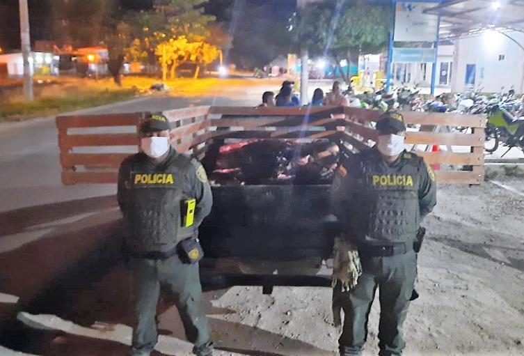 Judicial, Policía, Magdalena, Municipio, Abigeato