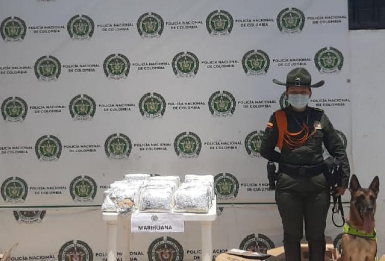 En total fueron 19 kilos de marihuana los incautados