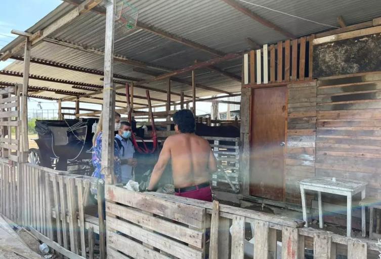 Procuraduría pidió restablecer derechos de menores de edad que viven en las pesebreras de Cartagena