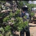 Bomberos de Santa Marta en intervención