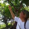 La mujer desde San Juan del Cesar en La Guajira, afirma que la virgen le encomendó contar la cura del coronavirus