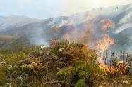 Arde el páramo Sabana Rubia en la Serranía del perijá