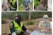 El Grupo de Protección Ambiental de la Policía Metropolitana y el Establecimiento Público Ambiental (EPA) Cartagena