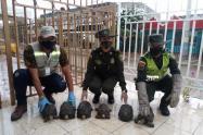 La entrega voluntaria se hizo por parte de residentes del barrio La María