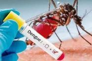 Tres menores han muerto en Cartagena por dengue