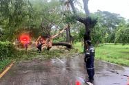 Las emergencias se registraron en la mañana de hoy.