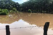 Creciente súbita del Río Tapia en Riohacha