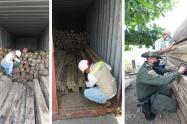 Decomisaron 330 metros cúbicos de madera rolliza, equivalente a 145 trozas
