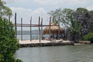 Dirección General Marítima advierte construcción sobre mangle en Tierrabomba en Cartagena