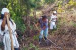 La comunidad hoy trata de sostener este proyecto, con la siembra de 5 hectáreas y sostenimiento 13.5 ht, más de cultivos