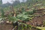 La emergencia ocurrió en Tierralta.